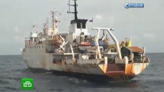 Моряков «Академика Страхова» на <nobr>Шри-Ланке</nobr> подкармливают российские туристы