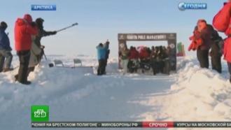 УСеверного полюса состоялся полярный марафон