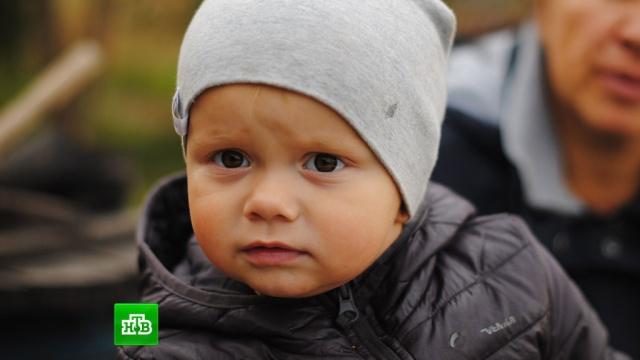 Двухлетнему Артёму Гринько требуются 225тысяч рублей, чтобы вернуть слух.SOS, благотворительность, болезни, дети и подростки, здоровье.НТВ.Ru: новости, видео, программы телеканала НТВ