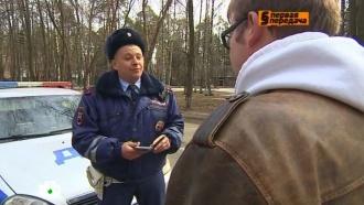 «Автоликбез»: вкаких случаях нарушение ПДД остается безнаказанным.НТВ.Ru: новости, видео, программы телеканала НТВ