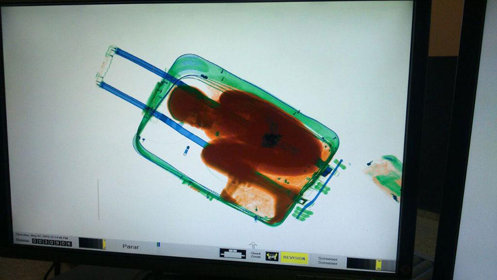Картинки по запросу девушка в чемодане