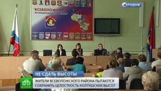 В Ленобласти вновь отстаивают земли Колтушского заказника