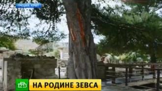 После удара молнии вроссиян вКносский дворец на Крите нагрянули военные
