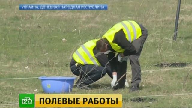 Новая группа экспертов пытается раскрыть тайну крушения Boeing под Донецком.Boeing, Донецкая область, авиационные катастрофы и происшествия, расследование.НТВ.Ru: новости, видео, программы телеканала НТВ