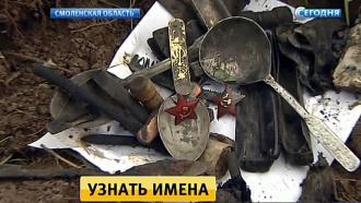 В забытой могиле под Ржевом нашли останки 73 советских солдат и офицеров