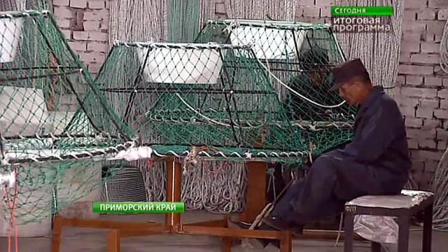 Российские зэки освоили производство ловушек для добычи краба.Приморье, рыба и рыбоводство, тюрьмы и колонии.НТВ.Ru: новости, видео, программы телеканала НТВ