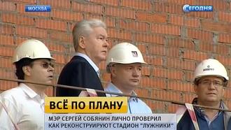 Собянин проверил ход реконструкции «Лужников» к ЧМ-2018