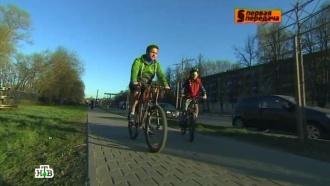 «Первая передача» напоминает о ПДД для велосипедистов.НТВ.Ru: новости, видео, программы телеканала НТВ