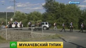 Вокрестностях Мукачева силовики ищут вооруженных бойцов «Правого сектора»