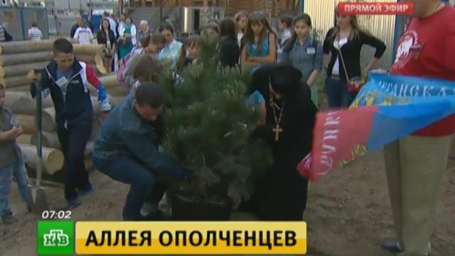 В Москве посадили черные сосны в память о погибших в Донбассе ополченцах.ДНР, Москва, Украина, войны и вооруженные конфликты.НТВ.Ru: новости, видео, программы телеканала НТВ