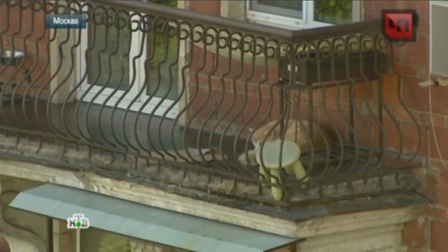 Москвичка взяла в заложники собственного пса.животные, Москва, собаки.НТВ.Ru: новости, видео, программы телеканала НТВ
