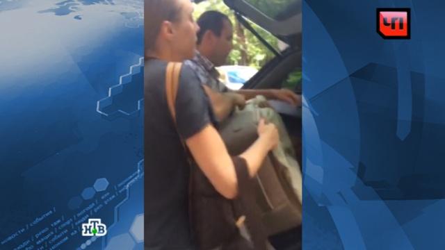 Зоозащитники исоседи заподозрили молодую москвичку вубийстве собаки.Москва, животные, собаки.НТВ.Ru: новости, видео, программы телеканала НТВ