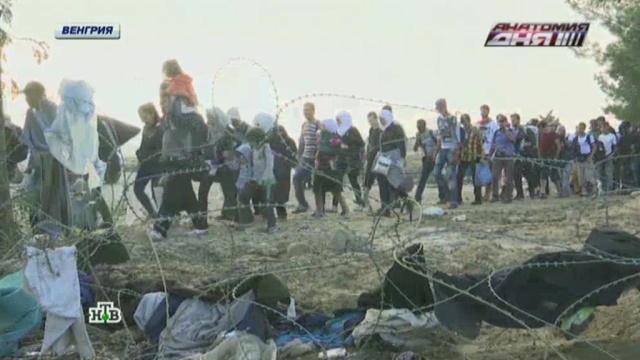 ЕС провел экстренную встречу по проблеме беженцев.Австрия, Венгрия, Германия, Европейский союз, беженцы.НТВ.Ru: новости, видео, программы телеканала НТВ