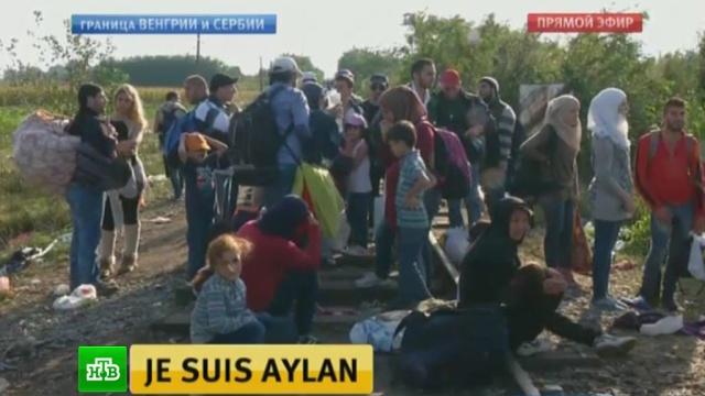 ЕС сумел договориться опереселении мигрантов из Греции иИталии.Австрия, Венгрия, Германия, Европейский союз, беженцы.НТВ.Ru: новости, видео, программы телеканала НТВ