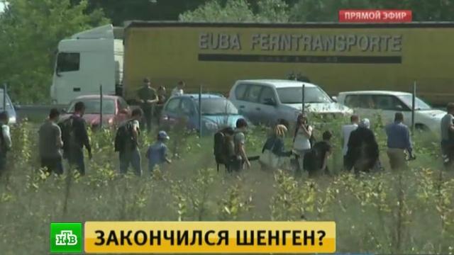Беженцы из-за погранконтроля меняют маршрут и идут в Европу новыми дорогами.беженцы, граница, Австрия, Сербия, Венгрия, Европа, Европейский союз, Норвегия.НТВ.Ru: новости, видео, программы телеканала НТВ