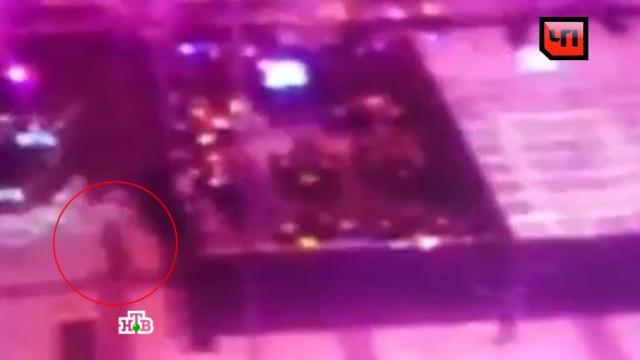 У Анны Семенович украли шубу за миллион на модном показе.знаменитости, кражи и ограбления, Москва, шоу-бизнес.НТВ.Ru: новости, видео, программы телеканала НТВ