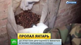 У калининградских полицейских украли изъятый янтарь на миллиарды рублей