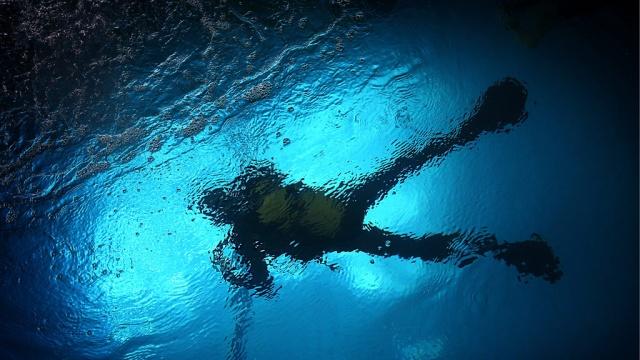 У берегов Швеции нашли затонувшую 300 лет назад яхту Петра I.Балтика, Швеция, археология, история, корабли и суда.НТВ.Ru: новости, видео, программы телеканала НТВ