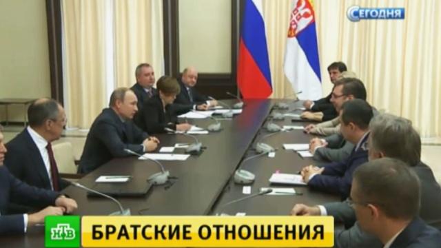 Путин: поставки сербской сельхозпродукции вРоссию выросли на 40%.Путин, Сербия, переговоры.НТВ.Ru: новости, видео, программы телеканала НТВ