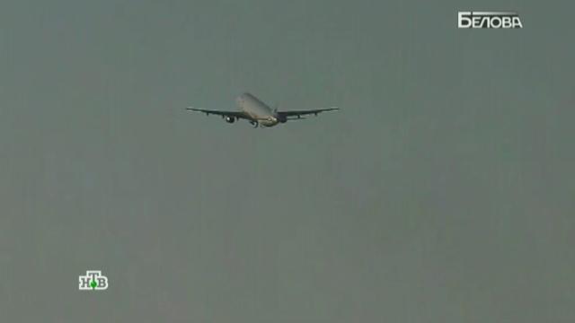 Разбившийся в Египте A321 мог разрушиться еще в воздухе.авиационные катастрофы и происшествия, Египет, самолеты.НТВ.Ru: новости, видео, программы телеканала НТВ