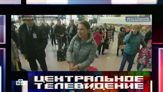 Российские экипажи свели к минимуму контакты со службами аэропортов Египта.Египет, авиация, аэропорты, самолеты, туризм и путешествия.НТВ.Ru: новости, видео, программы телеканала НТВ