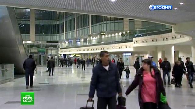 В аэропортах Москвы отменены 15 рейсов в Египет.Египет, авиакомпании, аэропорт Шереметьево, аэропорты, самолеты, туризм и путешествия.НТВ.Ru: новости, видео, программы телеканала НТВ