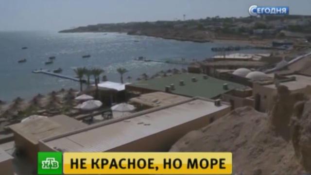 Российские туристы ищут замену египетским пляжам.Египет, авиационные катастрофы и происшествия, самолеты, туризм и путешествия.НТВ.Ru: новости, видео, программы телеканала НТВ