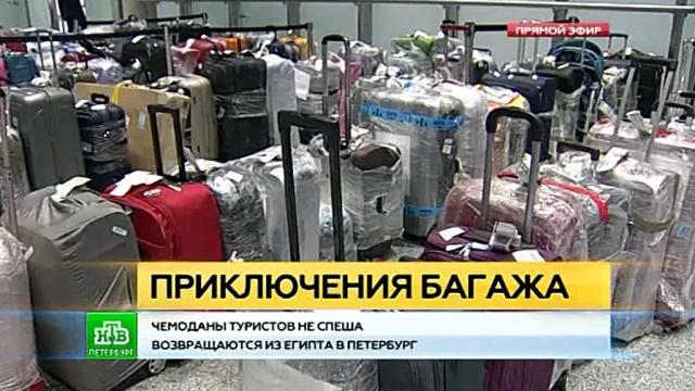 Вернувшиеся из Египта петербуржцы не спешат забирать свои чемоданы в Пулково.Египет, Пулково, Санкт-Петербург, авиационные катастрофы и происшествия, авиация, аэропорты, туризм и путешествия.НТВ.Ru: новости, видео, программы телеканала НТВ