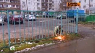 «Первая передача» избавила жителей Печатников от незаконной платной парковки.НТВ.Ru: новости, видео, программы телеканала НТВ