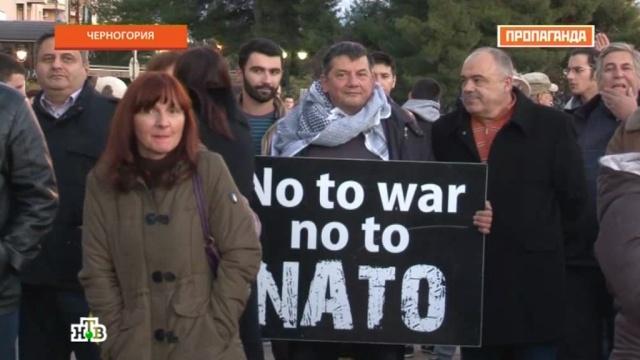 Черногорцы рассказали «Пропаганде», как их против воли тянут в НАТО.Балканы, НАТО, Черногория, эксклюзив.НТВ.Ru: новости, видео, программы телеканала НТВ