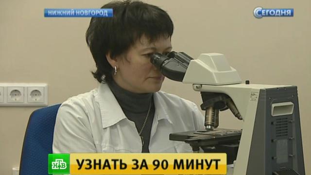Нижегородские ученые изобрели уникальный чип для быстрой диагностики рака.Нижегородская область, изобретения, инновации, медицина, наука и открытия, онкологические заболевания.НТВ.Ru: новости, видео, программы телеканала НТВ