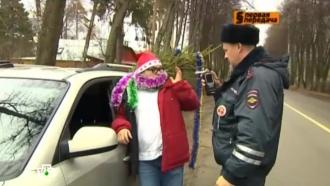 «Автоликбез»: что необходимо знать при прохождении теста на алкоголь.НТВ.Ru: новости, видео, программы телеканала НТВ