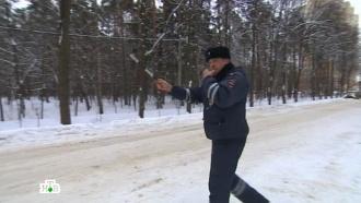 «Право руля», 24 января.НТВ.Ru: новости, видео, программы телеканала НТВ