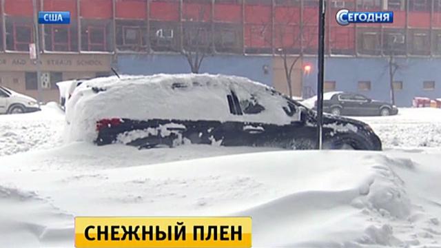 Американцы откапываются из-под снега иподсчитывают ущерб.Вашингтон, Нью-Йорк, США, зима, снег.НТВ.Ru: новости, видео, программы телеканала НТВ