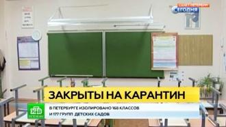 Школы и детсады Петербурга вводят карантин из-за гриппа