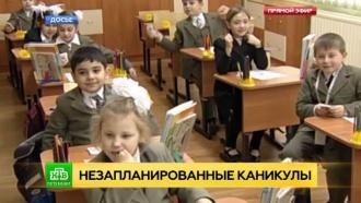 Политик из Петербурга предложил не учитывать стаж при выплате больничного по гриппу