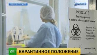 Эксперты прогнозируют спад эпидемии гриппа к середине февраля