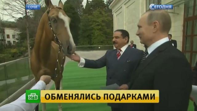 Путин подарил королю Бахрейна коня, а взамен получил меч.Ближний Восток, Путин, Сочи, терроризм, экономика и бизнес.НТВ.Ru: новости, видео, программы телеканала НТВ