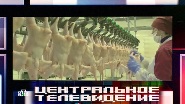 Мафия куриных посредников: что продают в магазинах под видом натурального мяса.еда, магазины, мясо, продукты.НТВ.Ru: новости, видео, программы телеканала НТВ