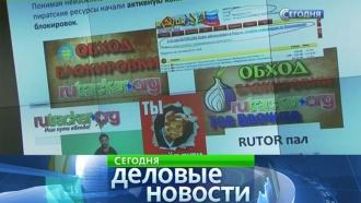 Роскомнадзор добивается права блокировать «зеркала» сайтов из черных списков