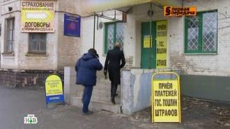 Водители записываются в очереди за полисами ОСАГО по реальной цене.НТВ.Ru: новости, видео, программы телеканала НТВ