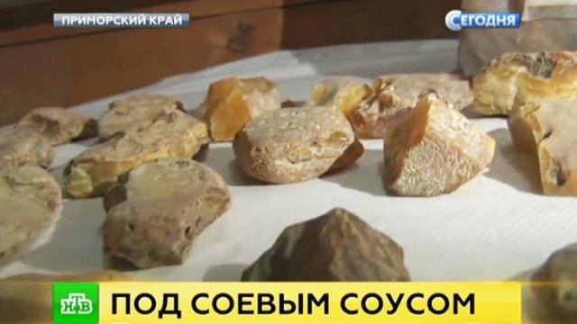 Контрабандисты пытались вывезти из России 800 кг янтаря под видом бобов.Дальний Восток, контрабанда, янтарь.НТВ.Ru: новости, видео, программы телеканала НТВ