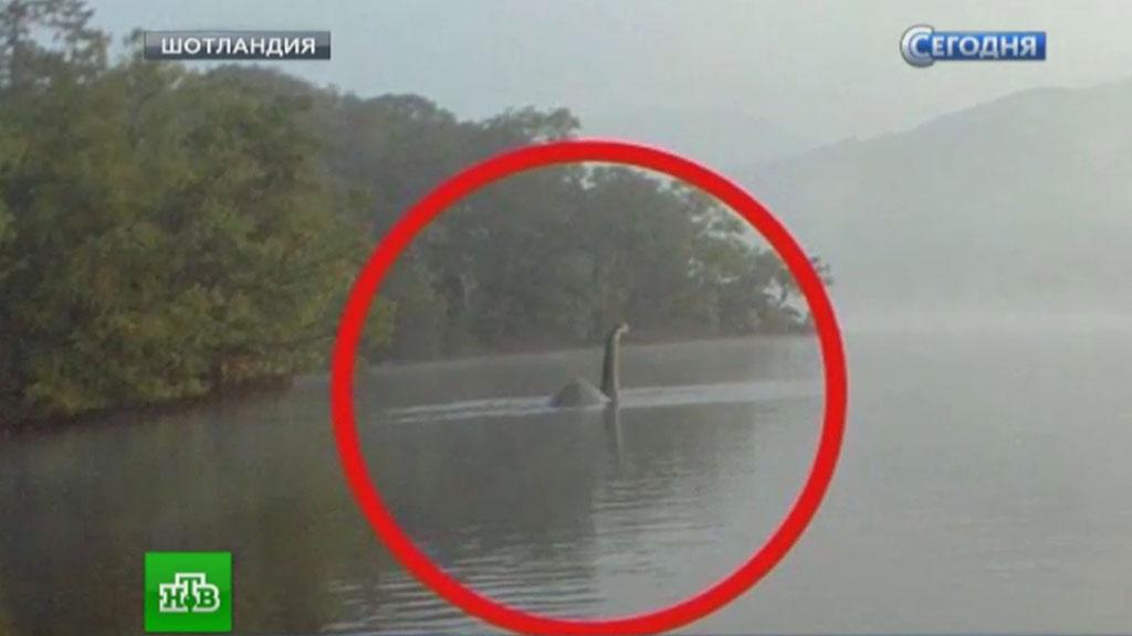 Картинки по запросу Лохнесское чудовище фото
