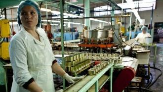 Рыбокомбинат «Островной» на Шикотане объявлен банкротом
