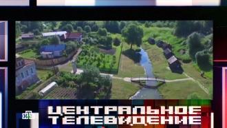 Рядом сМосквой нашли уникальное место отдыха.НТВ.Ru: новости, видео, программы телеканала НТВ