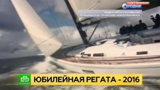 Опытнейшие яхтсмены выходят на петербургский старт Nord Stream Race