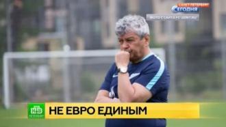 Луческу дебютировал на тренировке «Зенита» в качестве главного наставника