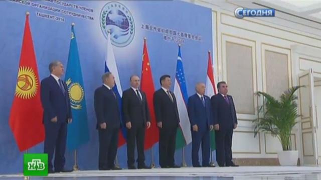На саммите в Ташкенте обсуждают присоединение Индии и Пакистана к ШОС.Индия, Китай, Монголия, Пакистан, Путин, Узбекистан, ШОС.НТВ.Ru: новости, видео, программы телеканала НТВ