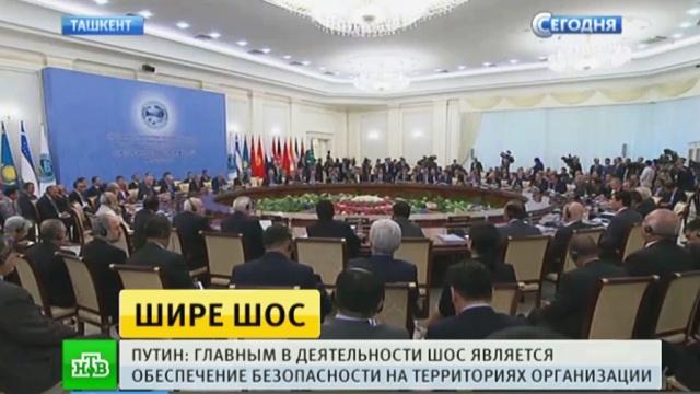 Азиатская «большая восьмерка»: каких решений ждать саммита ШОС.Индия, Китай, Монголия, Пакистан, Путин, Узбекистан, ШОС.НТВ.Ru: новости, видео, программы телеканала НТВ