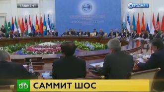 Путин призвал ШОС усилить борьбу с терроризмом и экстремизмом